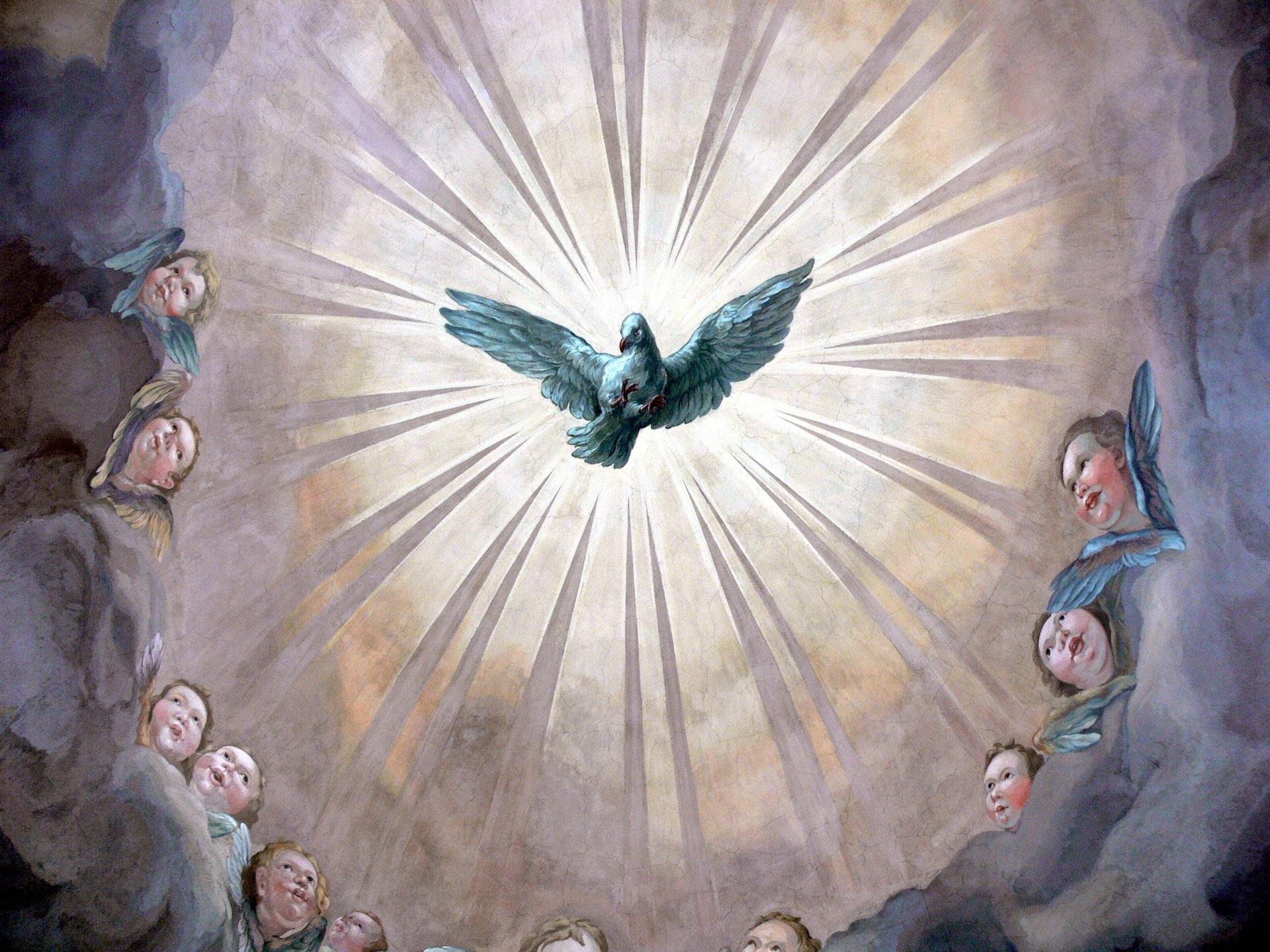 Pentecostal Dove - smaller