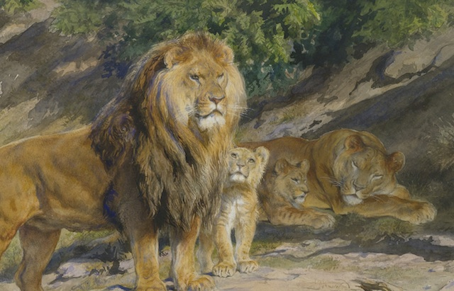 4-lions